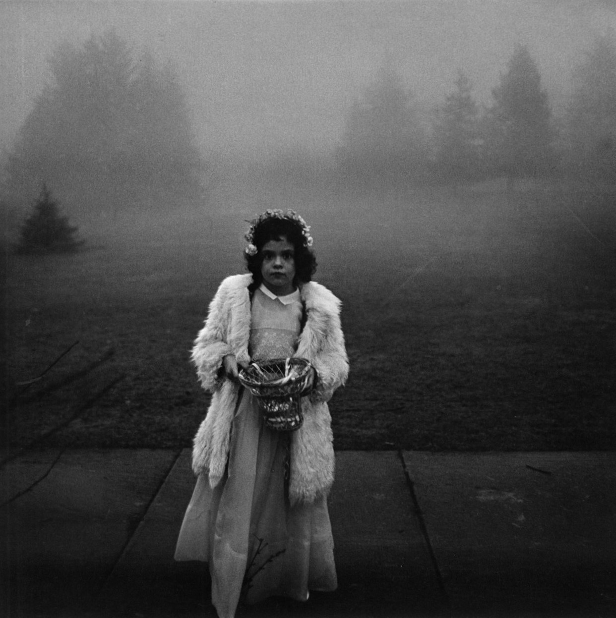 Bridesmaid with a basket of flowers at a wedding conn 1964 photography diane arbus